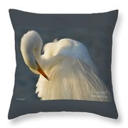 Great Egret Grooming Throw Pillow
