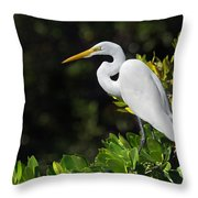 Great Egret In The Florida Everglades Throw Pillow