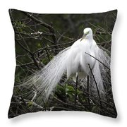 Great Egret In Tree Throw Pillow