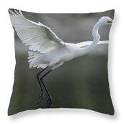 Great Egret Landing Sarawak Borneo Throw Pillow