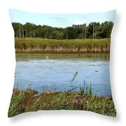 Great Egret On Berm Pond At Tifft Nature Preserve Buffalo New York Throw Pillow