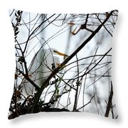 Great Egret Roosting In Winter Throw Pillow