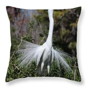 Great Egret Showoff Throw Pillow