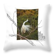 Great Egret - Stretch Throw Pillow