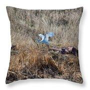 Great Egret Takes Flight Throw Pillow