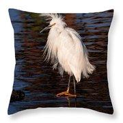 Great Egret Walking On Water Throw Pillow