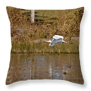 Great Egret Wing Water Reflections Throw Pillow