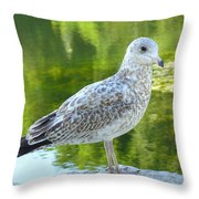 Great Expectation Throw Pillow