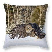 Great Gray Owl Pictures 740 Throw Pillow