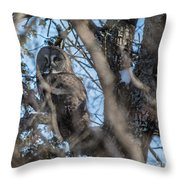 Great Grey In The Woods Throw Pillow