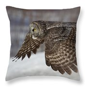 Great Grey Owl In Flight Throw Pillow by Jakub Sisak
