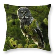 Great Grey Owl On The Hunt Throw Pillow