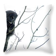 Great Grey Owl On Watch Throw Pillow