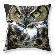 Great Horned Owl At Rest Throw Pillow