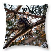 Great Horned Owl Looking Down  Throw Pillow