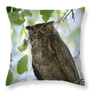 Great Horned Owl On A Branch  Throw Pillow