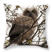 Great Horned Owlet 2 Throw Pillow