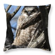 Great Horned Owlet Finishes Lunch Throw Pillow