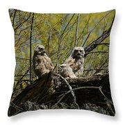 Great Horned Owlets 1 Throw Pillow