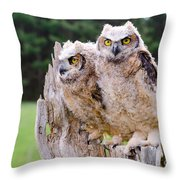 Great Horned Owlets Throw Pillow