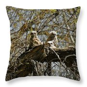 Great Horned Owlets Photo Throw Pillow