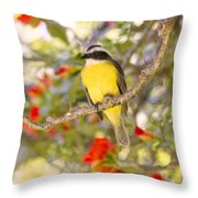 Great Kiskadee On A Branch Throw Pillow