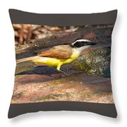 Great Kiskadee Throw Pillow