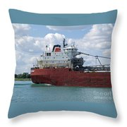 Great Lakes Transport Throw Pillow