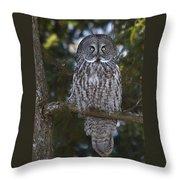 Great Owl Eyes Throw Pillow