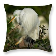 Great Egret Takes A Stance Throw Pillow