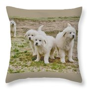 Great Pyranese Puppies Throw Pillow by Bonnie Willis