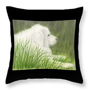 Great Pyrenees Dog In Grass Animal Pets Canine Art Throw Pillow