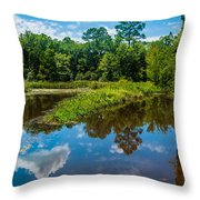 Great Reflections Throw Pillow