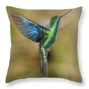 Great Sapphirewing Hummingbird Throw Pillow