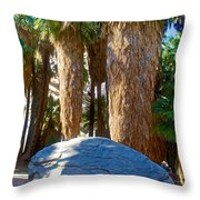 Great Sliding Rock In Lower Palm Canyon In Indian Canyons Near Palm Springs-california Throw Pillow