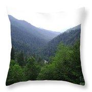 Great Smokey Mountains Throw Pillow