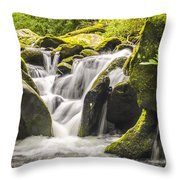 Great Smoky Mountains Tn Roaring Fork Motor Nature Trail Waterfall Throw Pillow