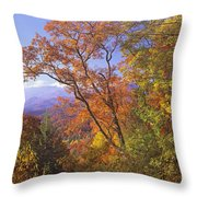 Great Smoky Mts From Blue Ridge Pkwy Throw Pillow