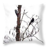 Great Spotted Woodpecker And A Blackbird. Dude What Are You Doing Throw Pillow