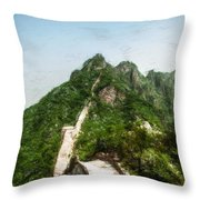 Great Wall 0033 - Acanthus Throw Pillow