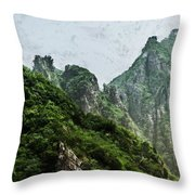Great Wall 0043 - Acanthus Hp Throw Pillow