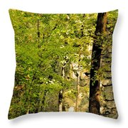 Great Wall Of Rock In Boulder Field Throw Pillow
