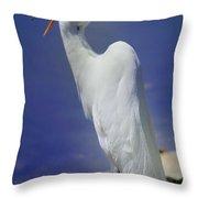 Great White Egret 2 Throw Pillow
