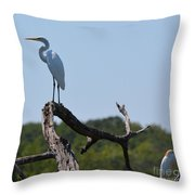 Great White Egret And Friend Throw Pillow