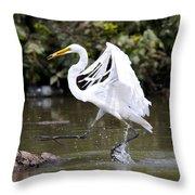 Great White Egret And Turtle Friends1 Throw Pillow