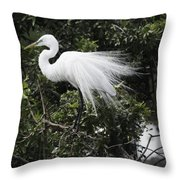 Great White Egret Building A Nest Vii Throw Pillow