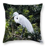 Great White Egret Building A Nest Viii Throw Pillow