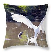 Great White Egret Fishing Sequence 2 Throw Pillow