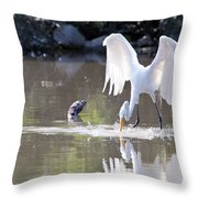 Great White Egret Fishing Sequence 4 Throw Pillow