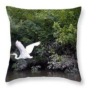 Great White Egret Flying 3 Throw Pillow